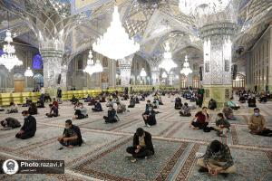 In photos2 : Sha'abanieh prayer in the holy shrine of Imam Reza (AS)