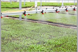 AQR takes great steps to manage water resources, help country's self-sufficiency