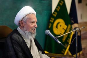 Imam Reza (AS), well-versed scholar in Quranic debates: Member of Assembly of Experts